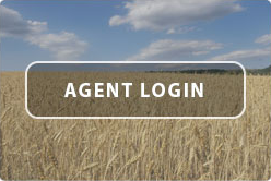 Wheat Field with Agent Login Button